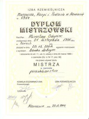 DyplomSzef2